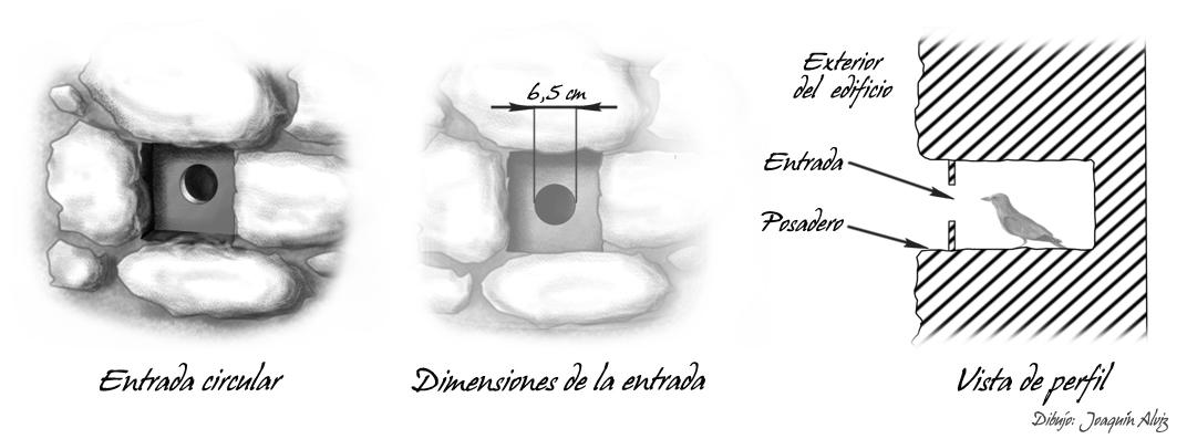 Adecuación mechinal circular