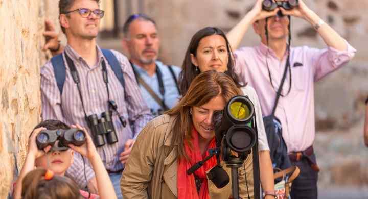 Nuevas acciones para consolidar la oferta de turismo ornitológico urbano del producto Urban Birding